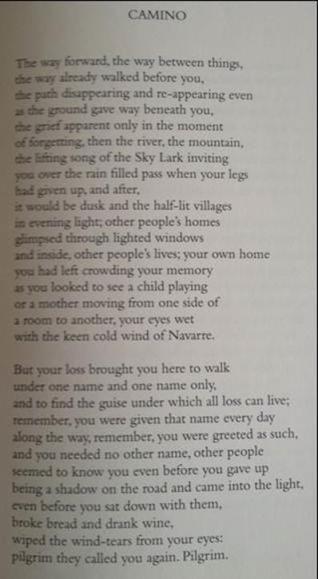 David Whyte's Camino
