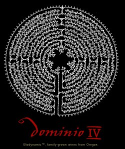 dominio iv label